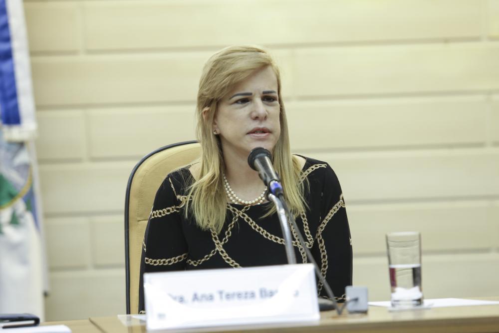 Ana Tereza Basilio / Foto: Lula Aparício